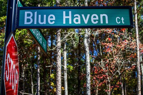 The Blue Haven Ct. Project
